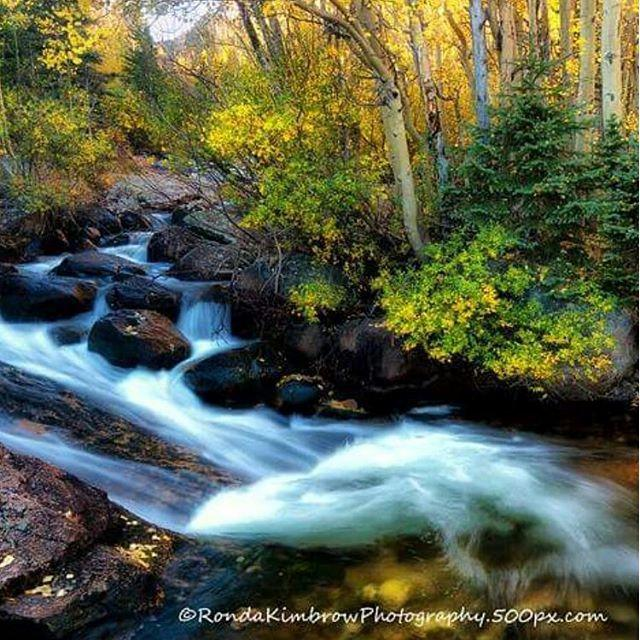 Fall In Rocky Mountain National Park Rockynps Rockymountainnationalpark Rmnp Rockymountains Coloradotography